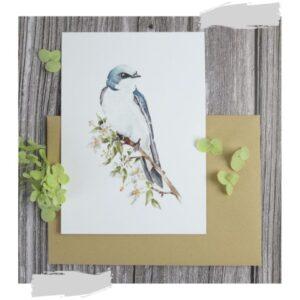 Ansichtkaart huiszwaluw met kraft envelop