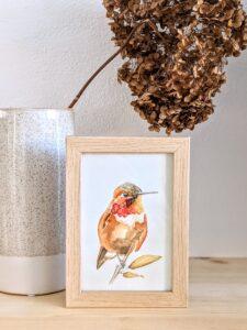 Ansichtkaart kolibrie aquarel in lijst